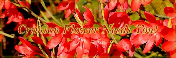 crimson_flower_recruitment