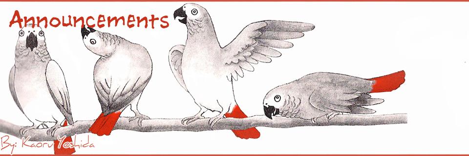 Announcement Birds